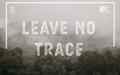 Leave No Trace – Have an Eco elopement